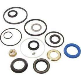 Seal kit - steering 4 bolt housing - disco1