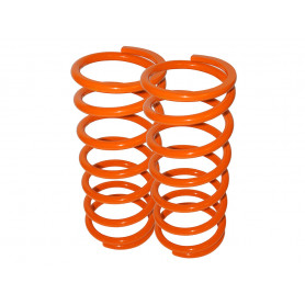 Britpart performance lowered springs front