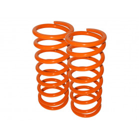 Britpart performance lowered springs rear