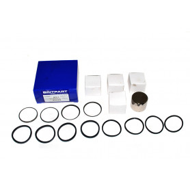 Caliper repair kit front