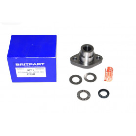 Kit axle pivot upper - disco1 abs