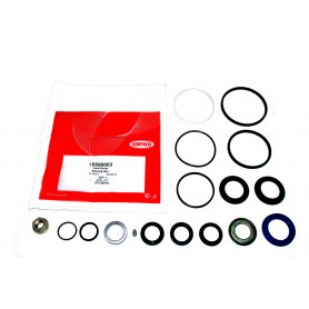Seal kit - steering 4 bolt housing - disco1_copie