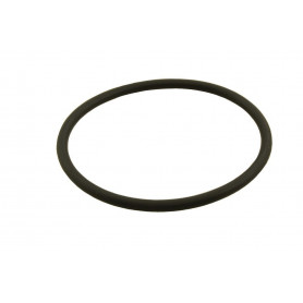 O-ring for thermostat - p38 turbo diesel