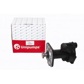 Pump vacuum