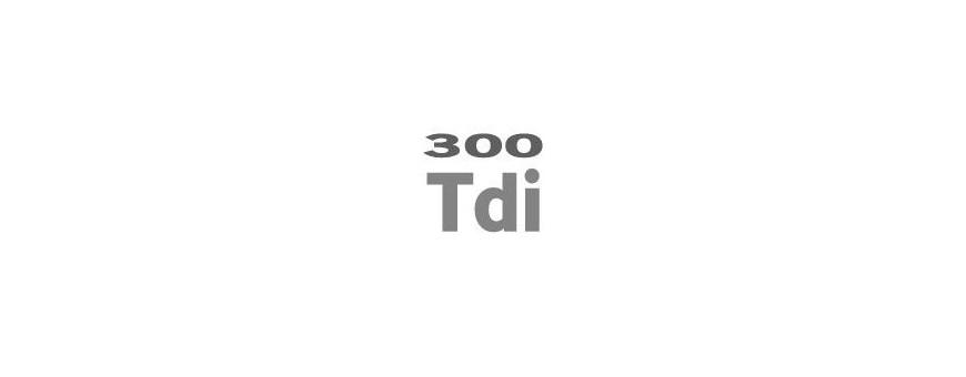 Moteur 300 TDI